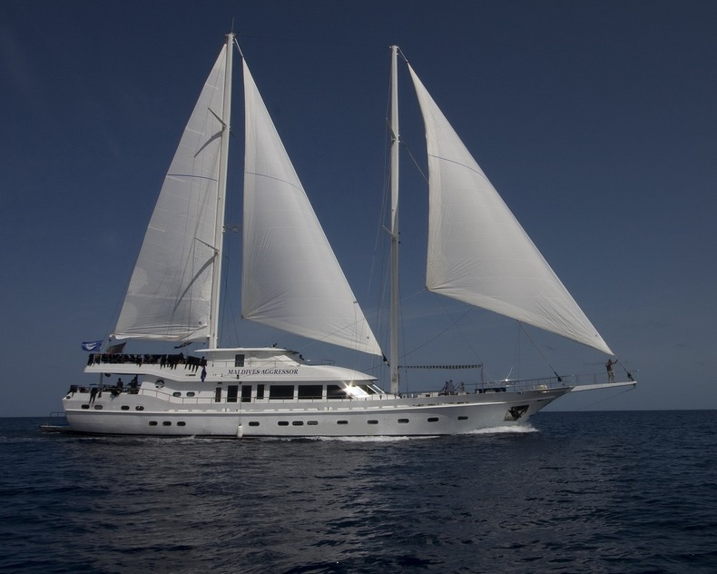 Motorsailer - All boating and marine industry manufacturers